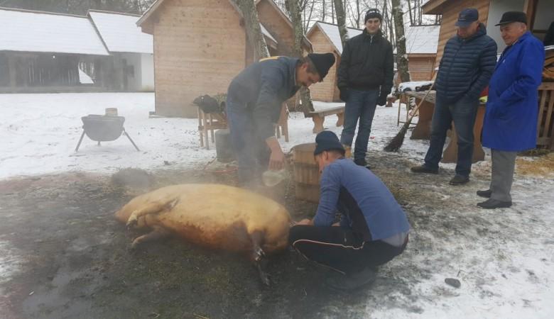 В румынском Сибиу публично забили и разделали свинью
