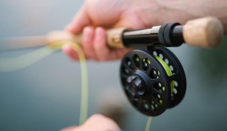 В Карелии могу запретить ловить судака в Сямозере до конца года