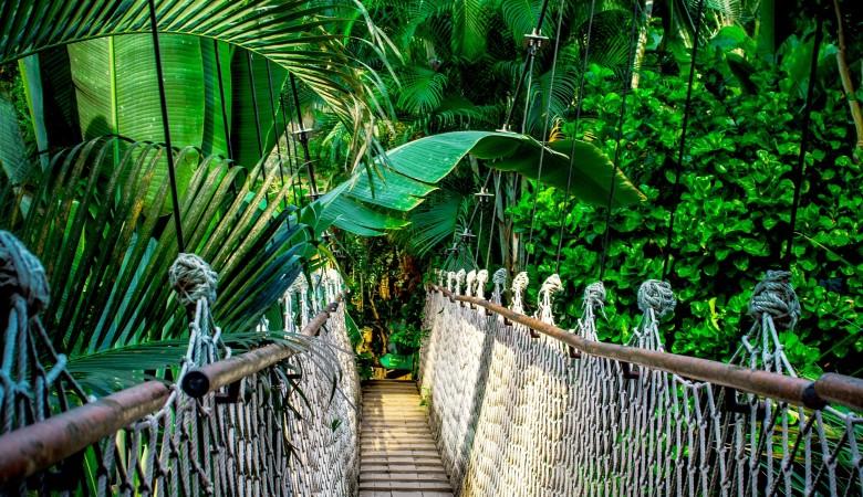 Таиланд вновь вводит карантин для туристов с 1 мая. Даже для привитых