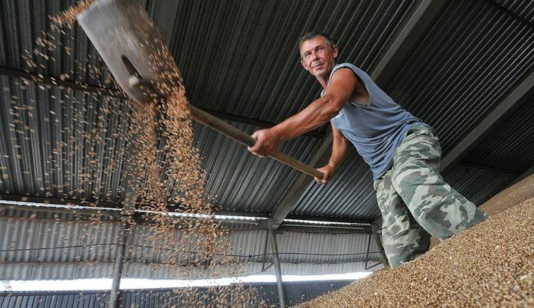 Севастополю выделят дополнительные объёмы из зернового фонда для сдерживания цен на хлеб