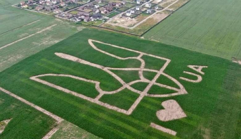 На зеленом поле под Борисполем появился гигантский герб Украины
