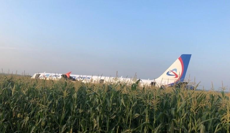Аварийно севший Airbus A321 готов к эвакуации с кукурузного поля